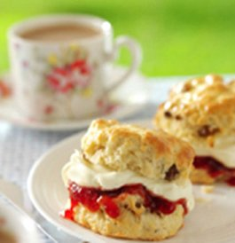 Cream-tea-time
